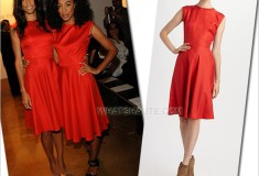 Veronica Webb or Corinne Bailey Rae in a red Sophie Theallet Silk Dress spring 2011 mercedes benz fashion week