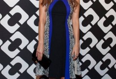 Ahna O'Reilly in a DVF Pre-Fall '14 Dress
