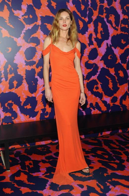 Erin Wasson in a DVF Dress