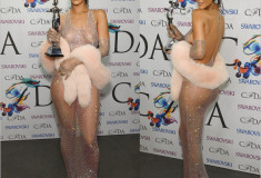 Rihanna hits the red carpet in a nude mesh dress - 2014 CFDA Fashion Awards - Fashion Icon of the Year
