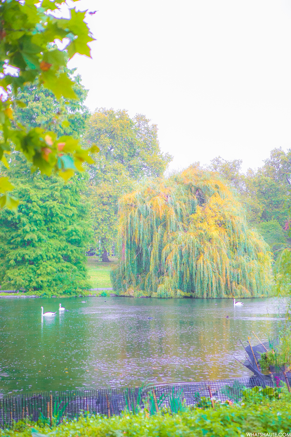 St. James's Park - London, England, What's Haute in the World