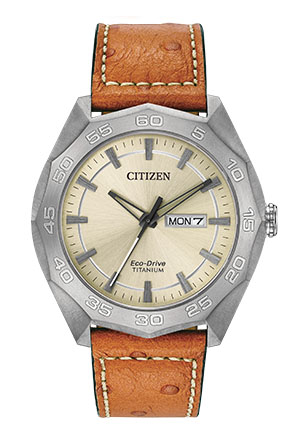 Citizen® Eco-Drive Men's Super Titanium Watch With Brown Leather Strap