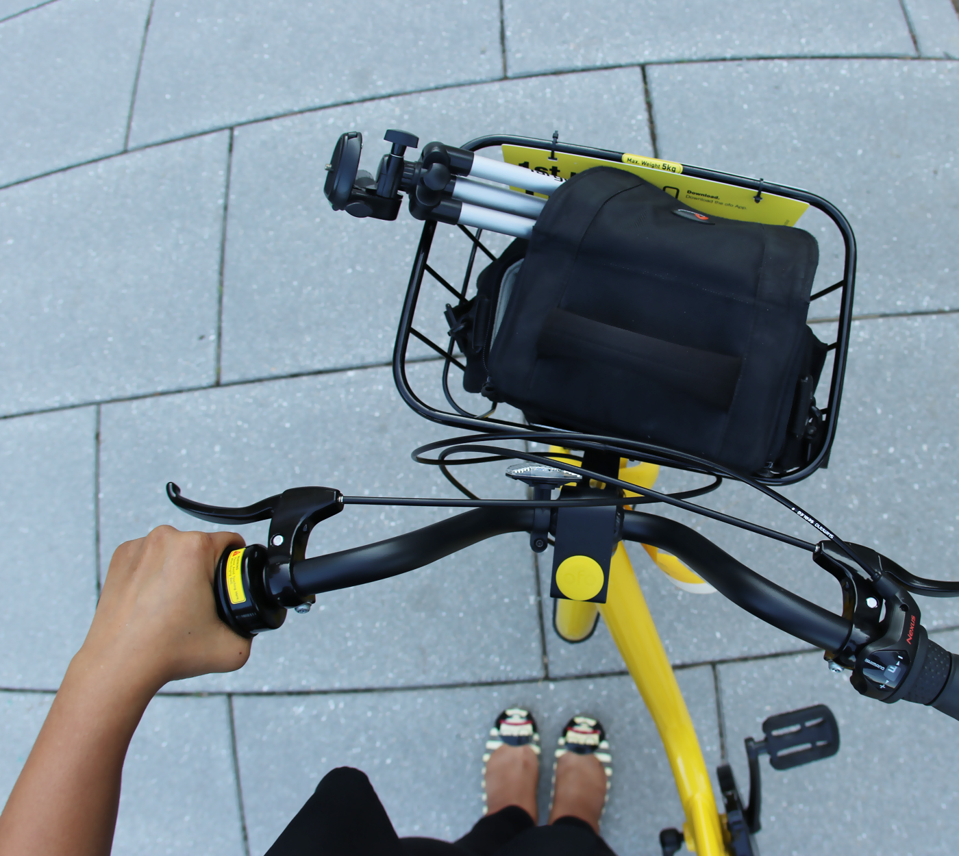 Introducing ofo: My New Fall Ride