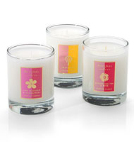 Aspinal of London Scented Candle Trio Darjeeling & Rose with Frangipini, Lime & Grapefruit