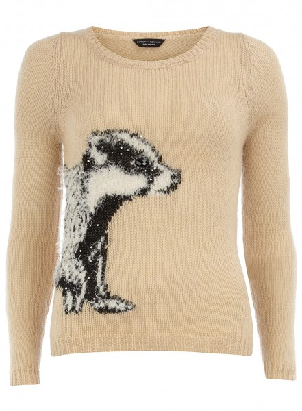 Dorothy Perkins Beige badger jumper