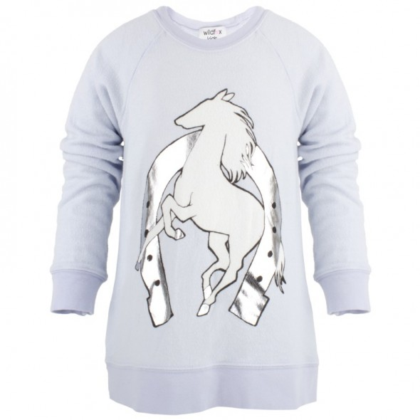 Wildfox Blue Horse print sweater