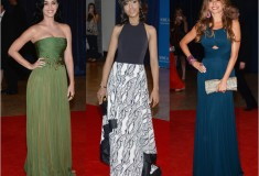 Best and worst dressed at the 2013 White House Correspondents' Association Dinner