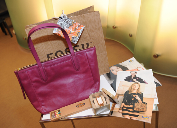 Fossil gift bag