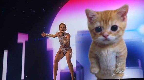 Miley cat AMAs