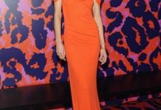 Erin Wasson in a DVF Dress