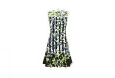 Peter Pilotto x Target Dress green floral stripe print